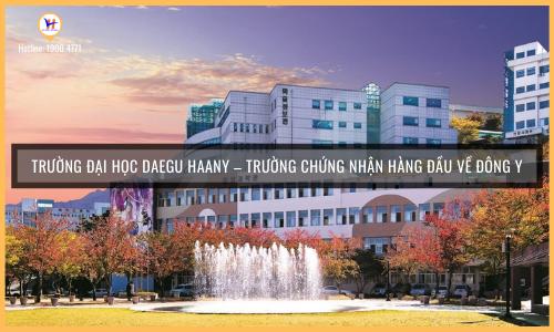 Đại học Daegu Haany Hàn Quốc