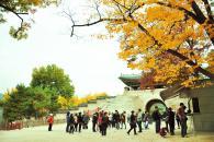 Văn hoá Nhanh nhanh tại Hàn Quốc