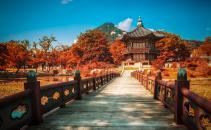 Du lịch Hàn Quốc (Phần 1): Thành phố Seoul